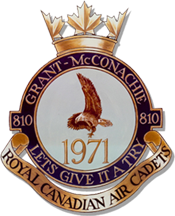810 Squadron Logo